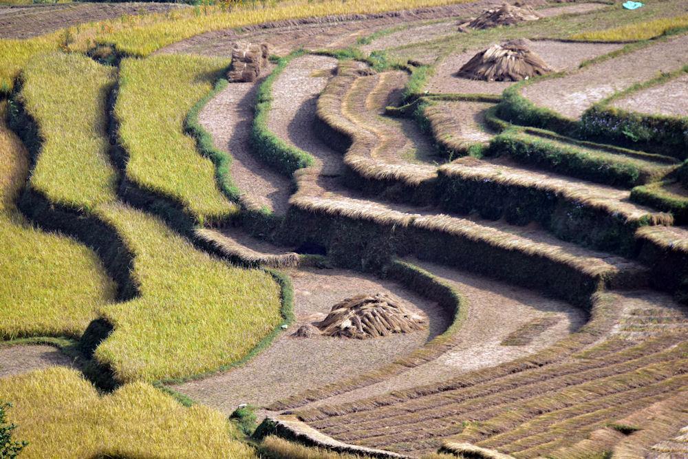 Nepalreise_2014 (4)