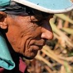 Zuckerrohrschneider in Inhumas (Goiás). Ein junger Arbeiter schafft bis zu 12 Tonnen am Tag, aber selbst Frauen oder über 60-Jährige Männer sehen oft keine Alternative zur Knochenarbeit.