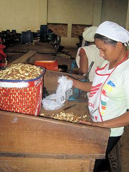 Paranussarbeiterin in einer Fabrik in Riberalta.