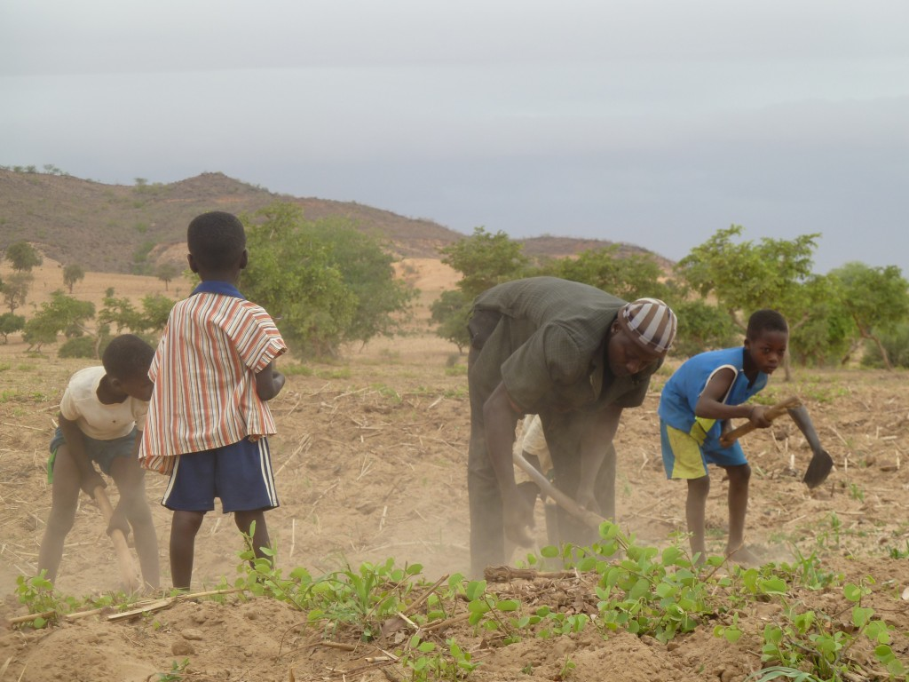 Ibro mit seinen Kindern bei der Feldarbeit