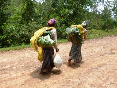 Beladen wie Esel: äthiopische Frauen