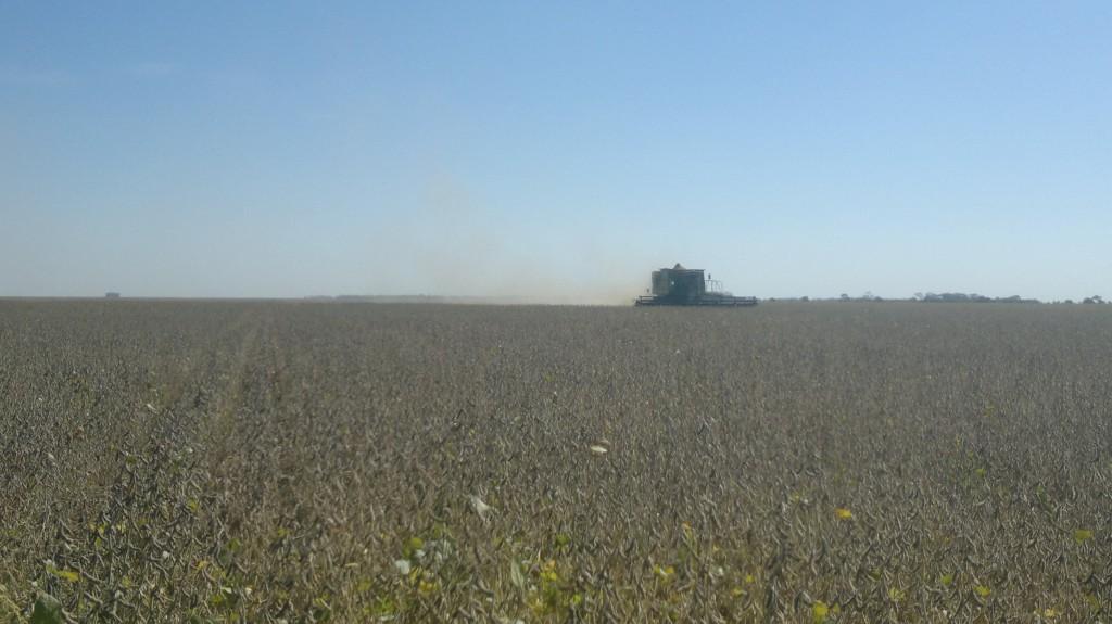Das argentinische Agrarmodell bedeutet für die Grossgrundbesitzer Fortschritt.