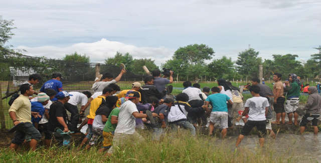 400 Landwirte stürmen das Versuchsfeld