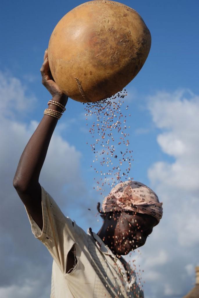 Unser Ernährungssystem muss umgekrempelt werden! ©Flitner/MISEREOR