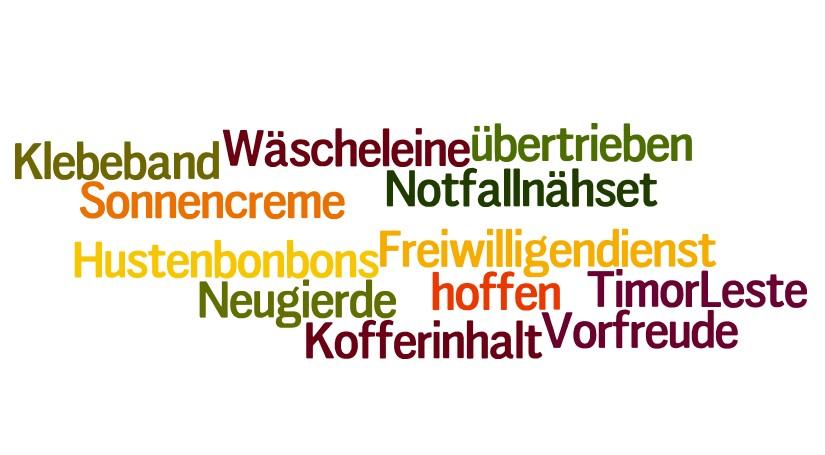 Wordle-Wolke Ausreise