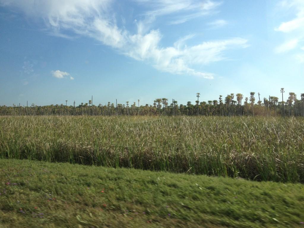 Landschaft auf der Fahrt nach La Leonesa