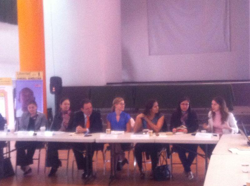 """Forum """"Effektiver Schutz von Menschenrechtsverteidigerinnen"""". u.a. anwesend: CEJIL, JASS, VN Frauen, Botschaft Norwegen, etc."""