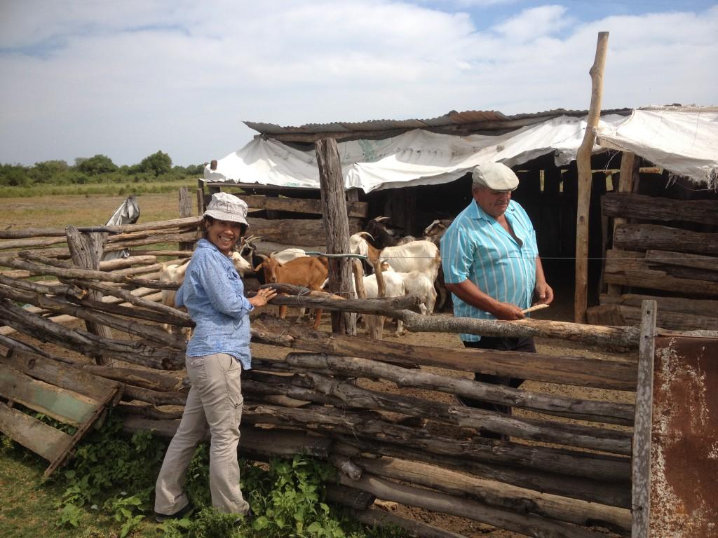 Mit Kollegin Araceli Pared zu Besuch bei Familie Ballude und ihren Ziegen
