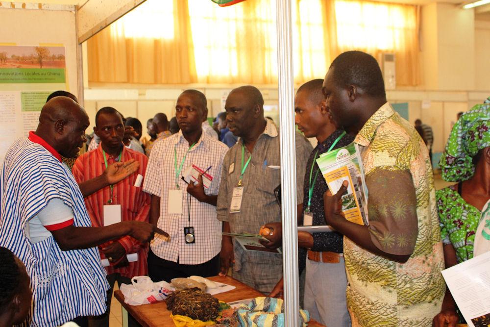 Austausch über biologische Unkrautbekämpfung aus Ghana