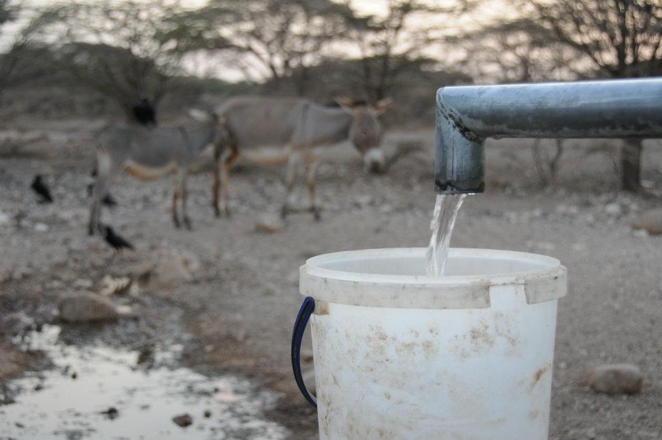 Wasser bedeutet Leben für Mensch und Tier_ Doch gerade in den ländlichen Regionen der Welt ist das Wasser knapp. Das gefährdet die Ernten und die Ernährungssicherheit_Singhal_MISEREOR