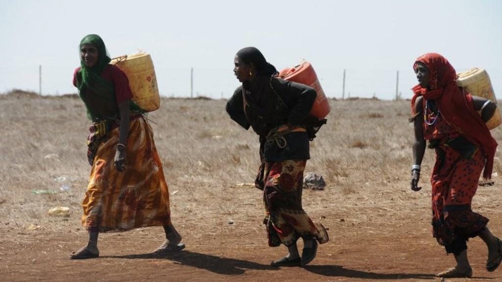 Weite-Wege_-Über-20-Kilometer-laufen-diese-Frauen-um-Wasser-für-ihre-Familien-zu-holen_-Singhal_MISEREOR2
