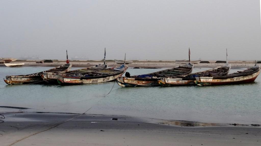 Fischerboote im Hafen vor Nouadhibou, Foto: Jonas Wipfler