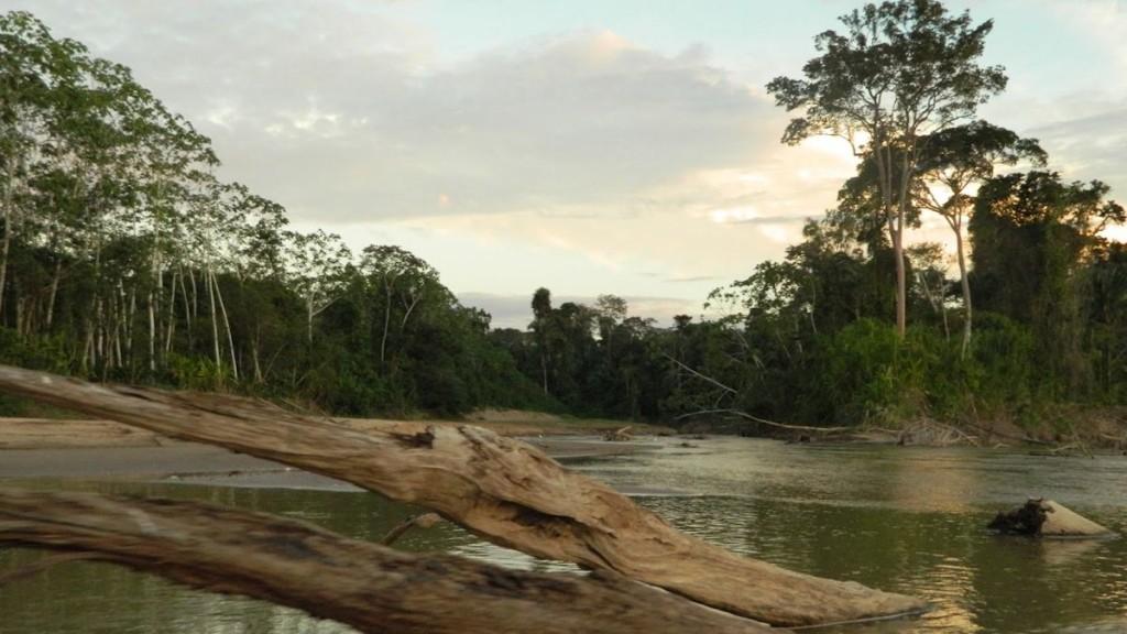 ESTIAGEM 2015 - TARAUACÁ- AC