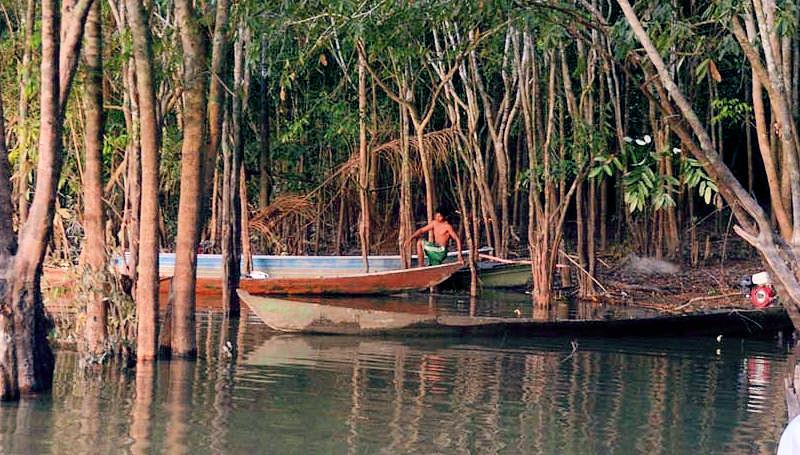 """Anlegestelle in einer geschützten kleinen Bucht, Dorf der Mundurukú Sawre Jaybu oder """"Dorf Juarez"""" (benannt nach dem Cazique Juarez) am Rio Tapajos, Distrikt Itaituba, Bundesstaat Pará, Brasilien; Foto: Florian Kopp / Misereor"""