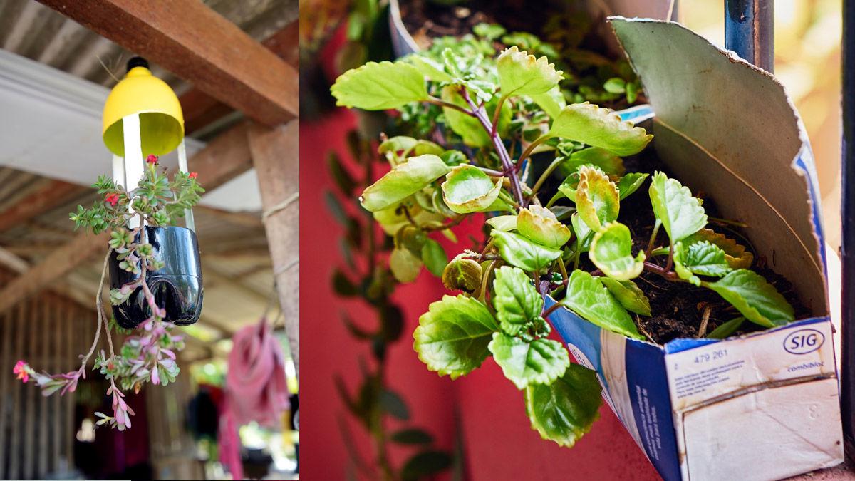Ideen aus Brasilien: PET-Flaschen als Blumentöpfe. Foto: MISEREOR/Florian Kopp