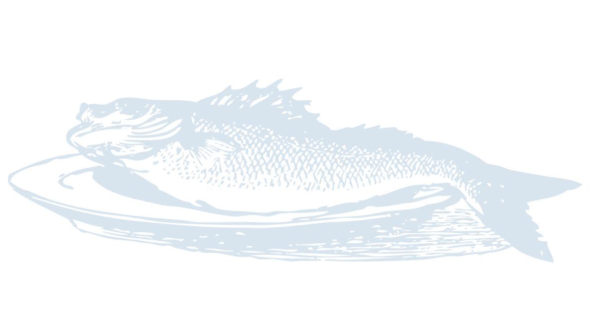 frischer-fisch-auf-den-tisch-oder-doch-nicht