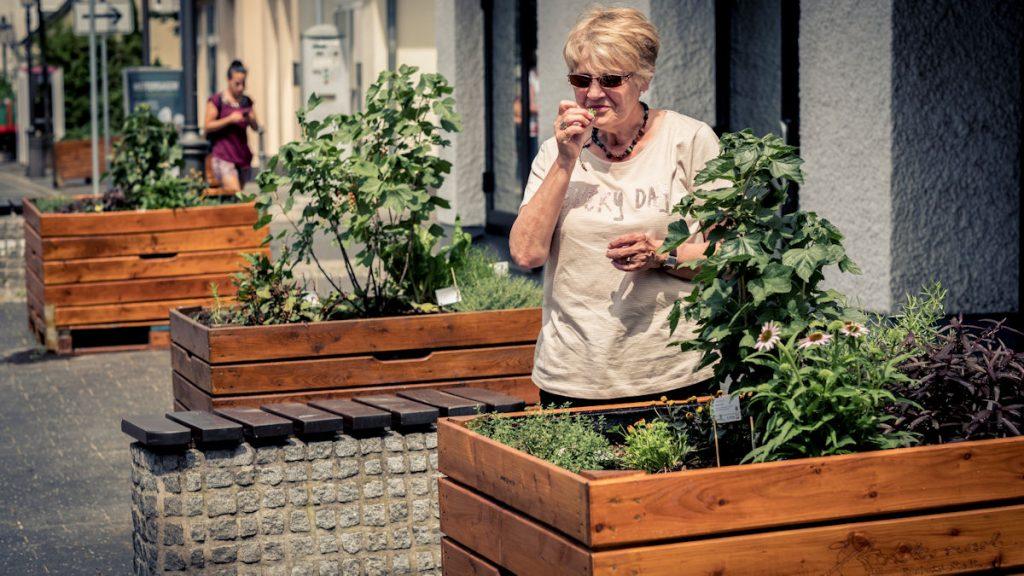 Jeder, der mag, kann sich ein paar Kräuter fürs Abendbrot aus den bepflanzten Kästen zupfen. © David Klammer