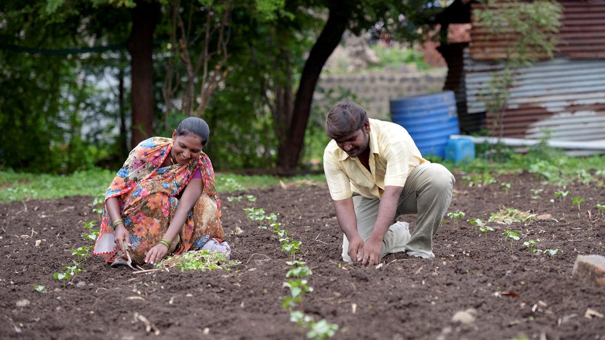 Nitin Laxman Kajabe und seine Frau Rajeshvari Nitin bei der Feldarbeit © Kopp/MISEREOR