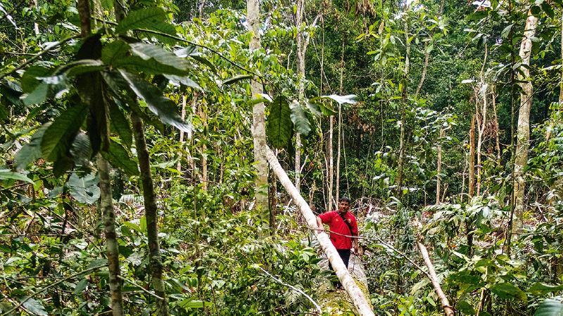 Niemand weiß, wieviel an Öl- und Gasreserven in dem Gebiet liegen, in dem die Tacanas die natürlichen Ressourcen nutzen. © Eduardo Soteras / MISEREOR