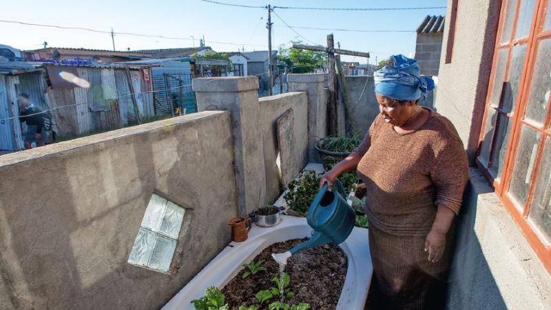 """""""Schaut nicht so traurig"""": Vuyiswa Zayi spricht mit ihren Spinat-Pflanzen,die sie in einer alten Badewanne angebaut hat. © Karin Schermbrucker / MISEREOR"""