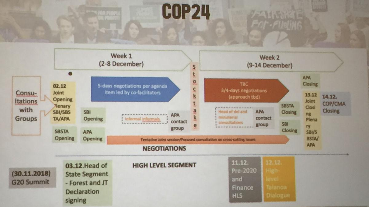 Schaubild des Ablaufplans