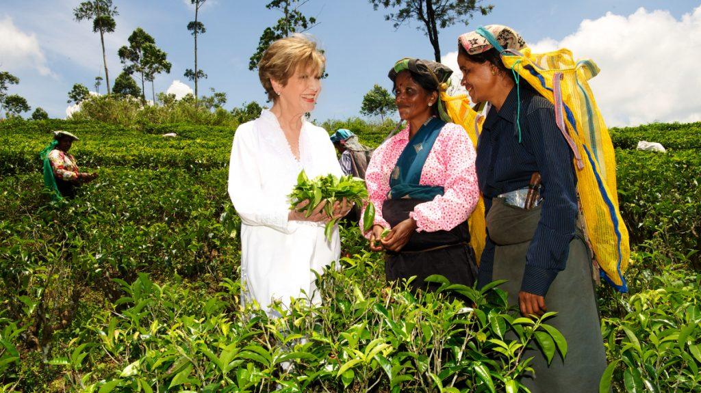 Thirumanaselvi und Krisnaveni zeigen der Carolin Reiber, wie man  den Ceylon-Tee erntet. © Ursula Dornberger