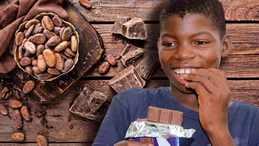 Wie alle Kinder liebt auch Daniel Schokolade. Ob die Kakaobohnen dafür aus dem Anbau seines Vaters stammen? Fotos: INADES/MISEREOR, iStock/Yemchuk, Grafik: Fundraising Profile/MISEREOR.