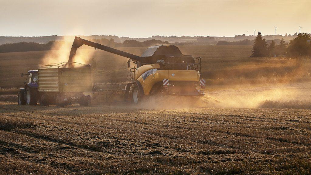 Mähdreschereinsatz bei Rapsernte: Für weniger Emissionen würden auch ein breiteres Spektrum der Anbaupflanzen auf den Äckern sowie weniger Kunstdünger und Pestizide sorgen.