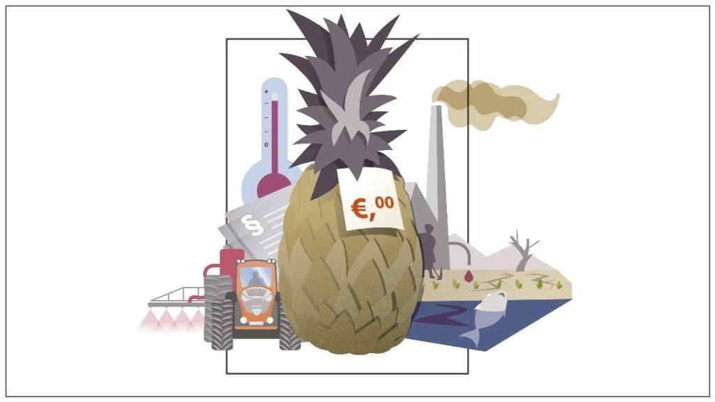 Ananas-Grafik wahre Kosten
