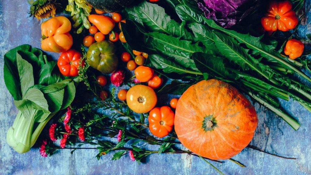 Bio-Gemüse Herbst