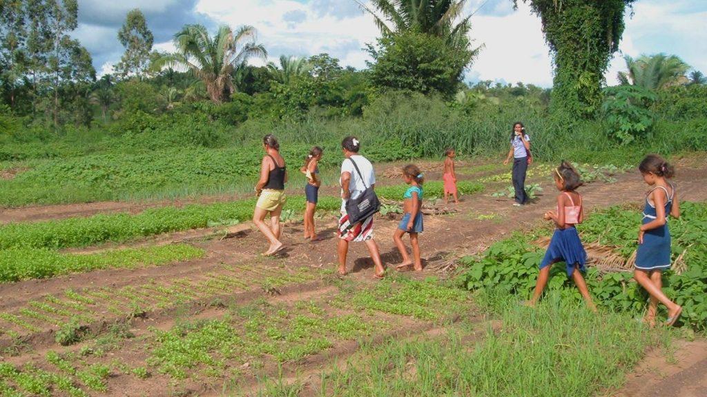 Gemeinschaftsgärten Frauenorganisation Brasilien