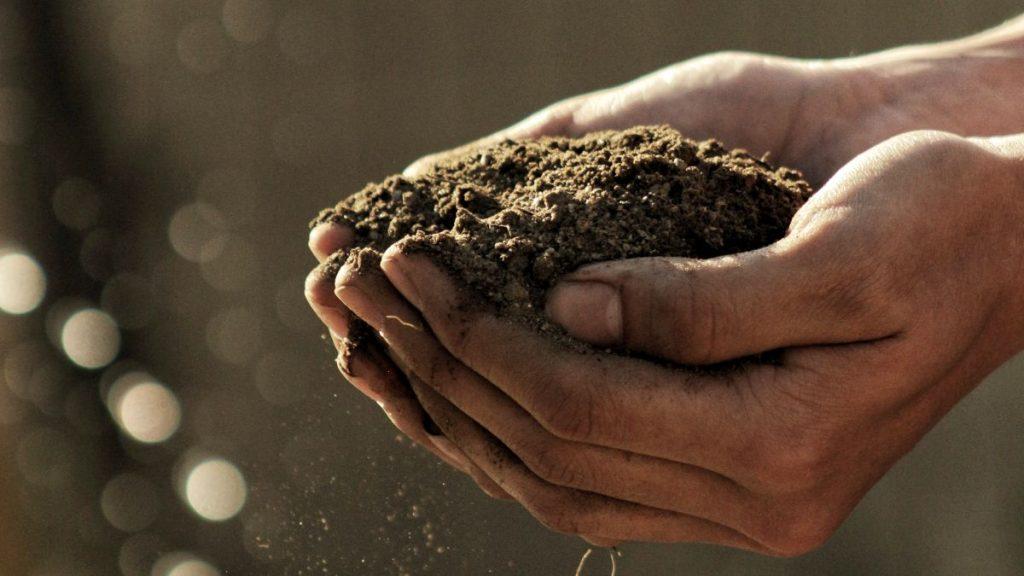 Landwirtschaft anders Agrarökologie