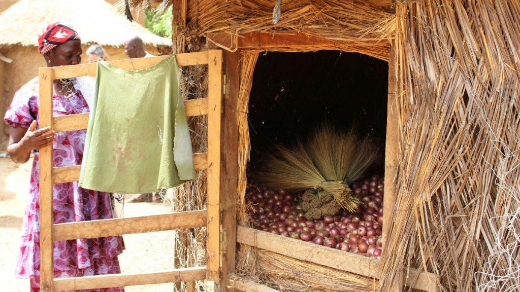 Burkina Faso Landwirtschaft Innovationen Kleinbauern