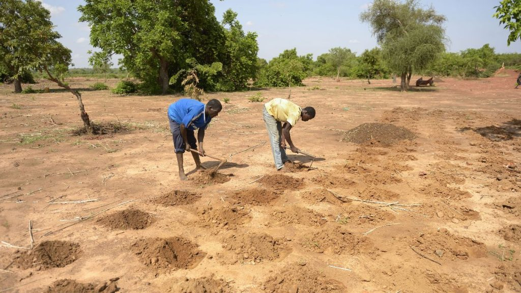 Burkina Faso Landwirtschaft Pflanzlochmethode zaï