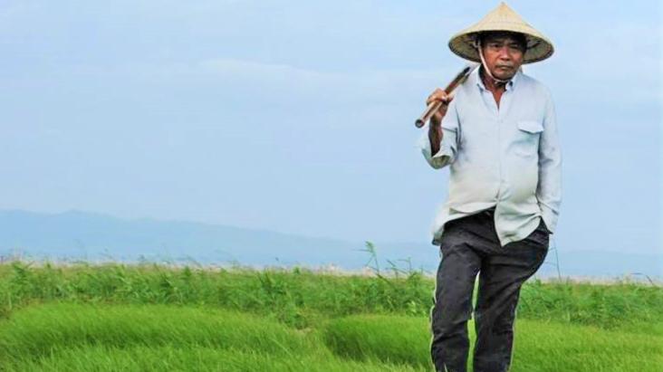 Reisanbau Reiszucht Philippinen Klimakrise